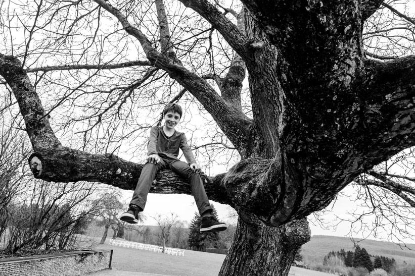 a boy sitting on a tree branch