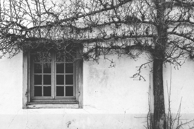 guest house in belgium