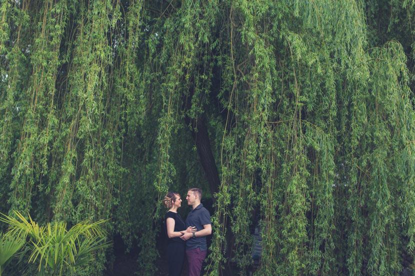 photo de couple sous un saule pleureur dans un jardin
